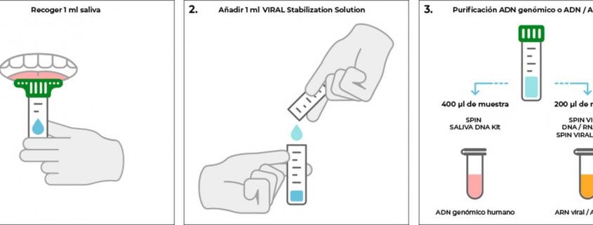 conoce-el-protocolo-de-recoleccion-de-muestras-de-saliva